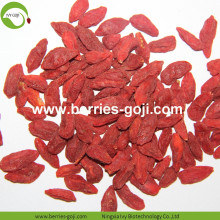 Factory Supply Healthy Bulk Fruit Product Goji