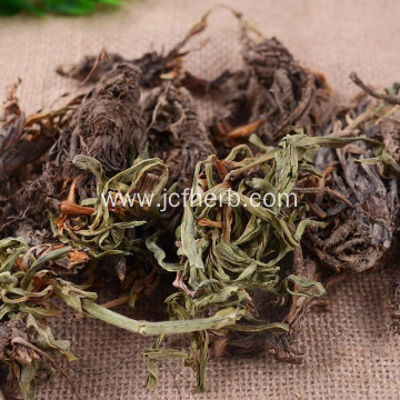 Nardostachys Jatamansi Raw Material Powder Spikenard Powder