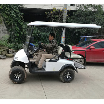 electric golf carts for sale with cheap prices