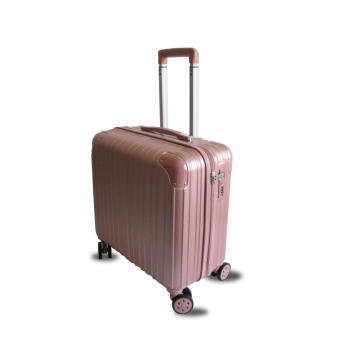 ABS Brushed boarding suitcase