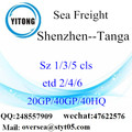Shenzhen Port Sea Freight Shipping To Tanga