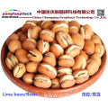 Natural Nutritional Tasty Self-planted Dried Lima Bean