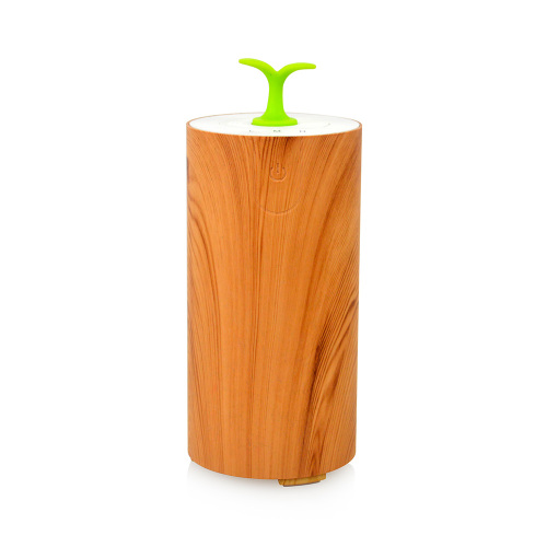 Portable Wood Best Car Diffuser Essential Oils
