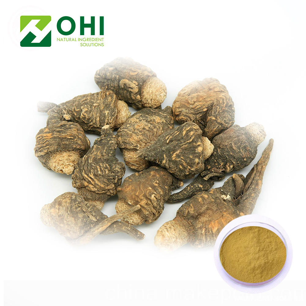 Maca Root Extract Macaenes Powder