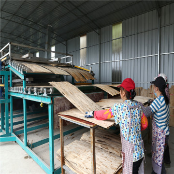 Wood Veneer Dryers Machines