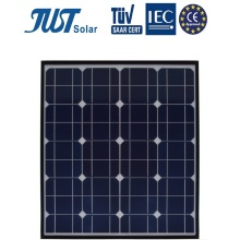 German Quality 65W Mono Solar Module with Chinese Price