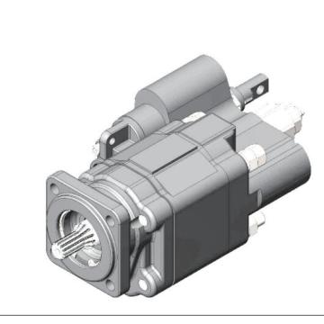 Medium Dumper Gear Pumps