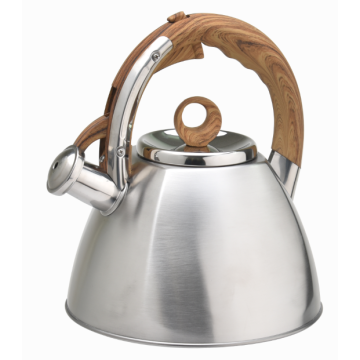 Amazon whistling kettle fast boiling water