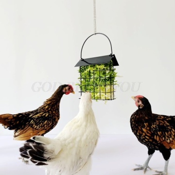 Chicken Feeder Basket Chicks Foraging Toy Metal Hanging Birdfeeders Bird Feeding Device for Small Parakeets Cockatiels