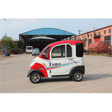 2020 New Model Electric Mini Car with 1000W Motor