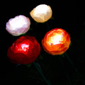 Outdoor Landscape Peony Lamp