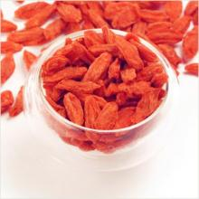 Top Grade 280granule/50g Goji Berry with Low Pesticides