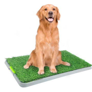 Dog Pee Pad for Potty Training