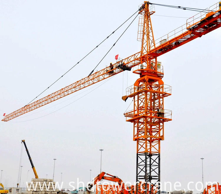 Customized Tower Crane