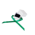 Earring White Paper Box with Green Ribbon