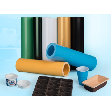 Rigid PP Plastic Film