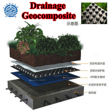 10mm Dimpled HDPE Drainage Board for Landscape