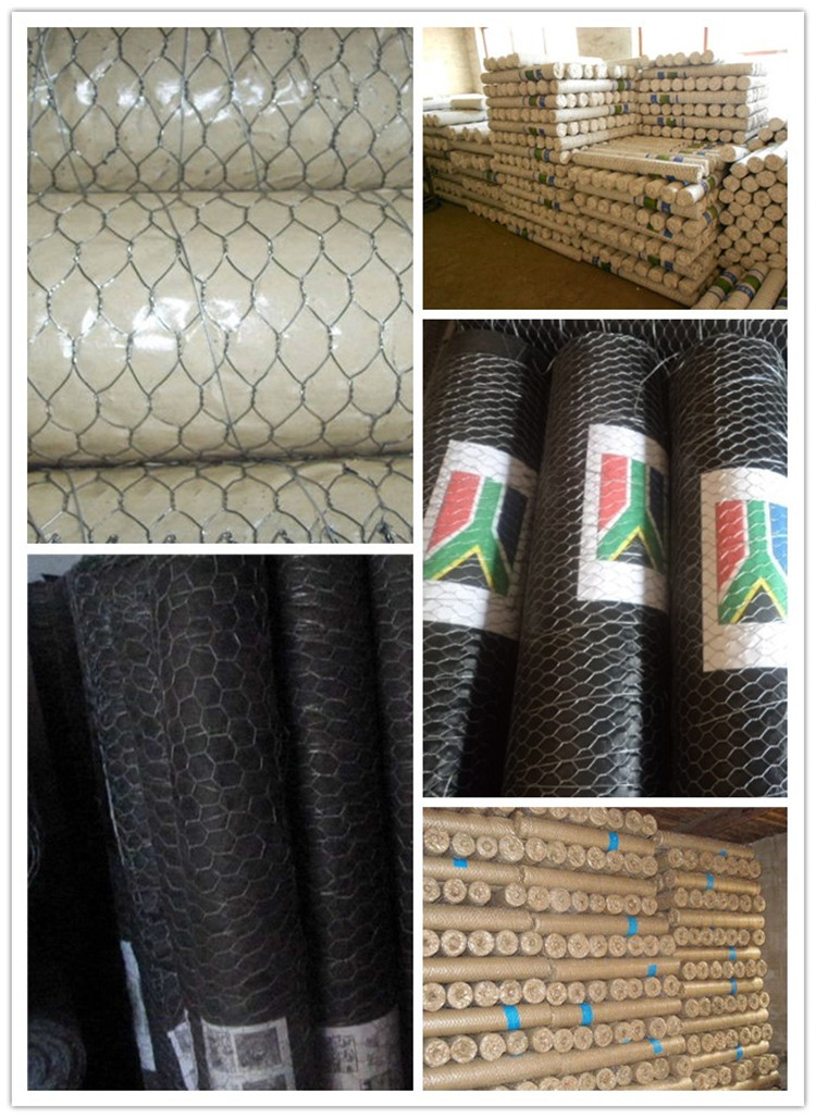 Hexagonal Wire Mesh q