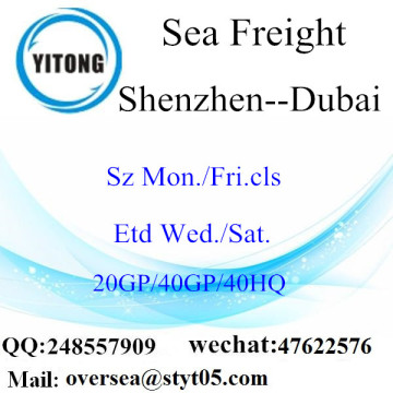 Shenzhen Port Sea Freight Shipping To Dubai