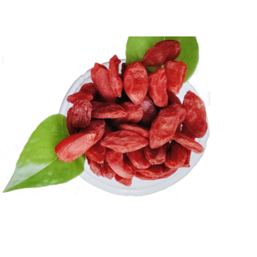 Organic   New crop  Goji berry/wolfberry