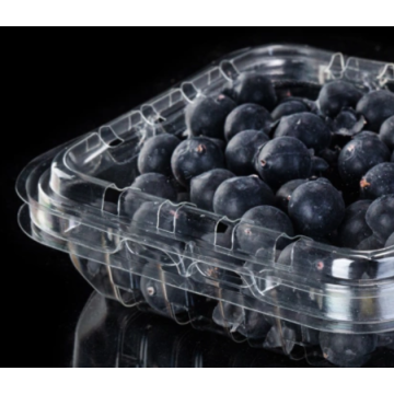 Disposable blueberry box for fruit shop