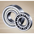 6021 Single Row Deep Groove Ball Bearing