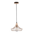 Modern metal Simple Design Pendant Light