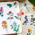 40pcs Fruit, Flower, Mushroom, Cactus Stationery Sticker Scrapbooking Journal Diary Diy Label Craft Stickers For Kid Boys Girls