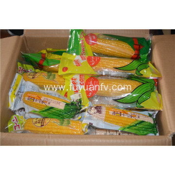 2019 hot sale sweet corn