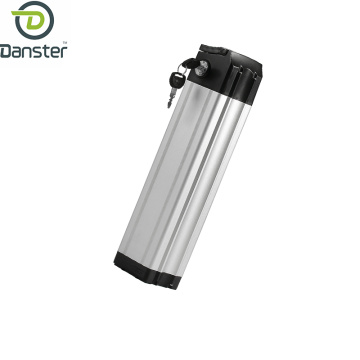 Silver fish lithium battery