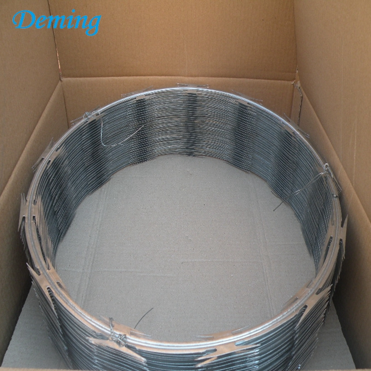 Factory Hot Dip Galvanized Razor Concertina Barbed Wire for Sale