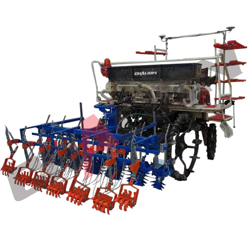 6 Rows Rarsing Rice Seedlings Machine Sale