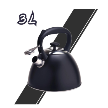 Stainless Steel Tea Kettle with large capacity