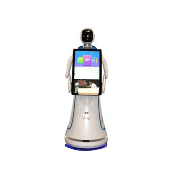 Welcoming Robot Reception Robot