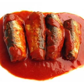 Canned Sardines In Tomato Sauce Canned Fish