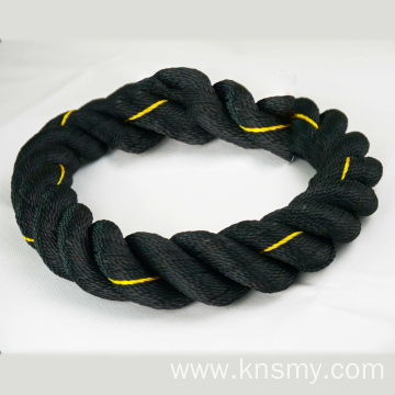 Qualified 100% polyester  three strands rope