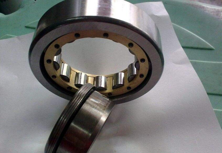 Cylindrical Roller Bearing 1030
