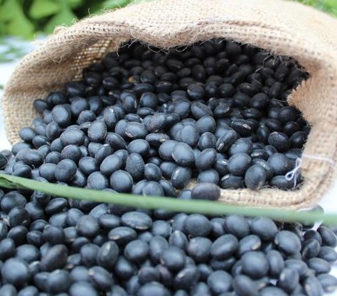 Black bean with green kernel