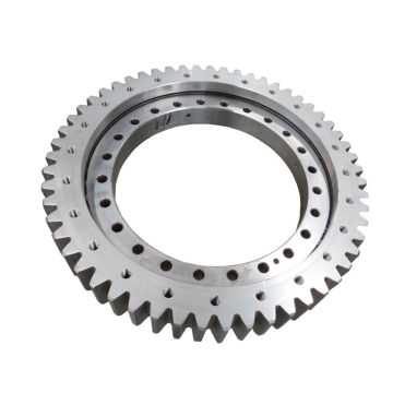 CRB11020 Slewing Ring Bearing