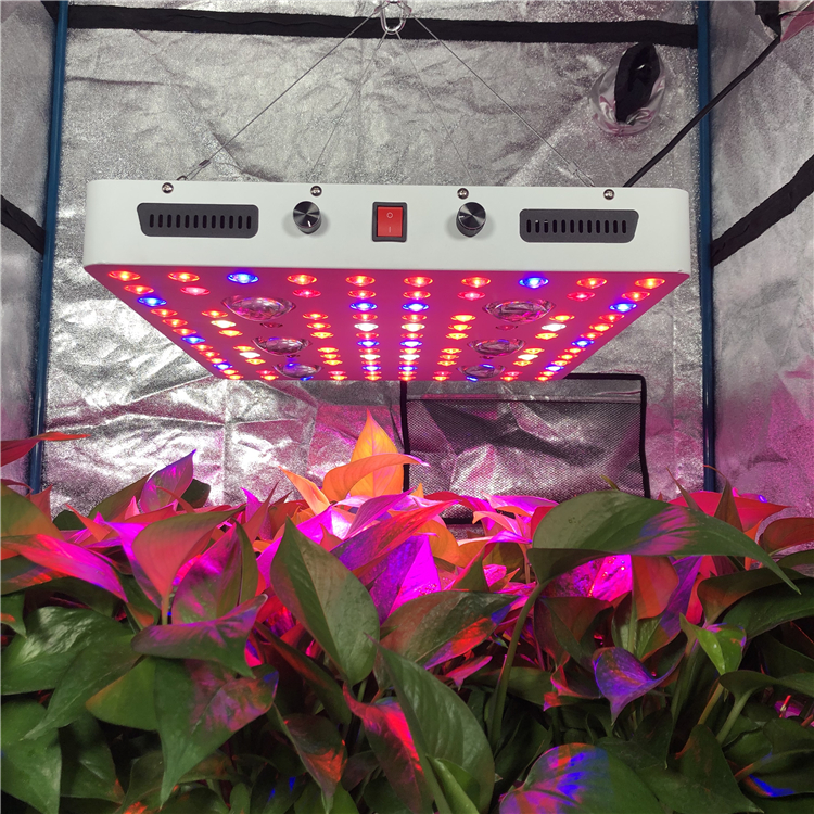 Dimmable Cree Cxb3590 Cob Led Grow Light