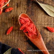 Where to Buy Goji Berry