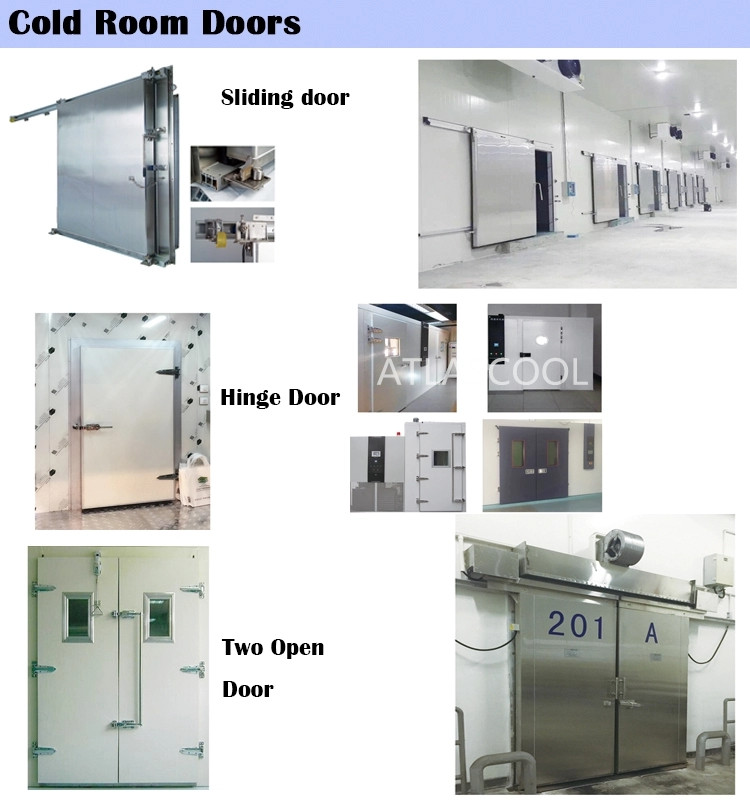 Cold Room Door