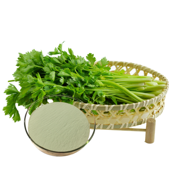 Best organic celery powder with more benefit