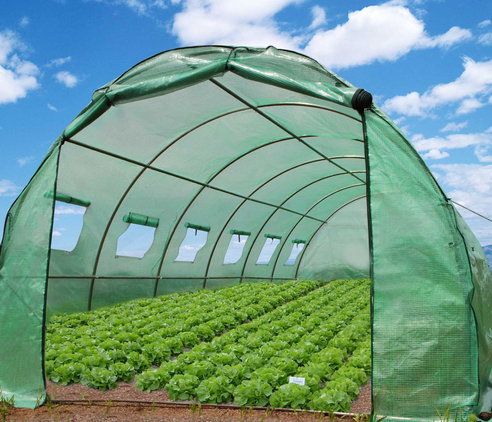Greenhouse PE fabric