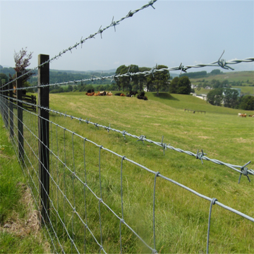 Hot dipped galvanized cattle fence