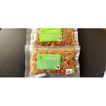 pets feed of dry yellow mealworms