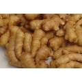 Globalgap Certified Air Dry Ginger