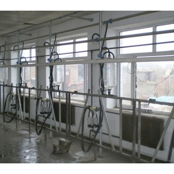High efficency milking parlor