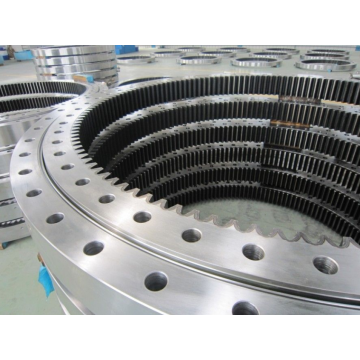YRT150 Slewing Ring Bearing