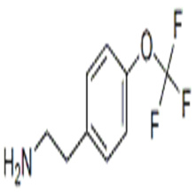 4-Trifluoromethoxyphenethylamine